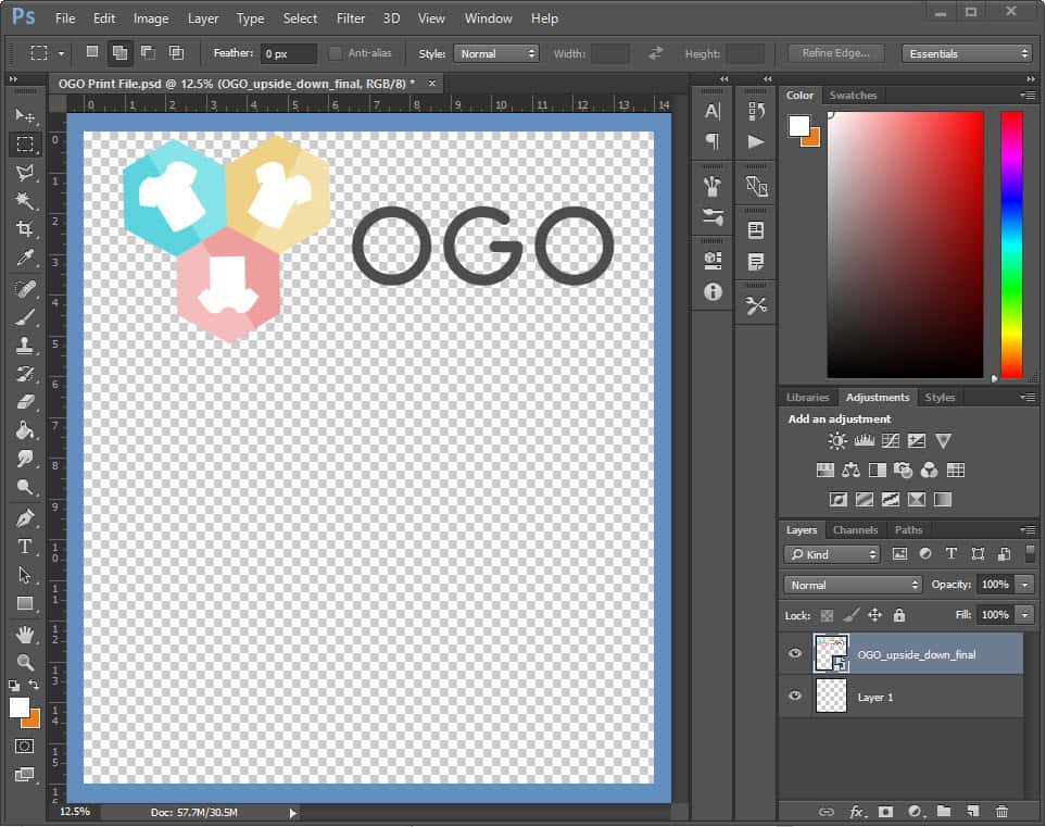 ogo print file guide